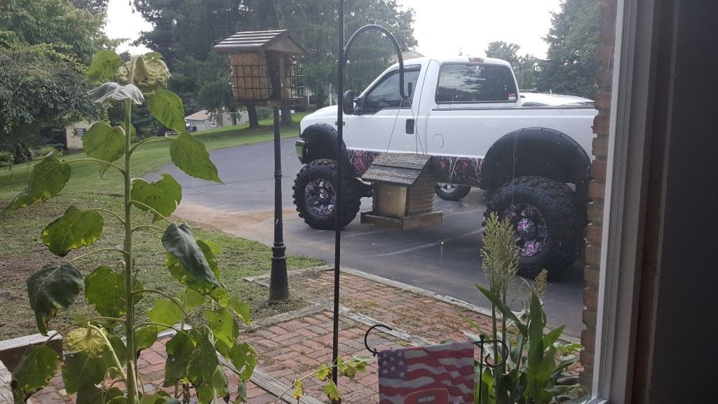 Lifted 2003 Ford F-250 Monster truck